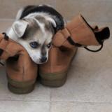 jugando con las botas