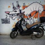 Perro callejero motorizado