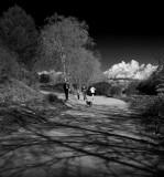 Camino de la Riera