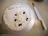 The cake - thanks Nan!