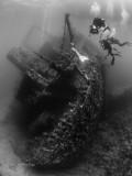 Ghanis D Mermaid Shoot