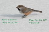 Bonne et Heureuse Année --- 0V3A1916 --- Happy New Year