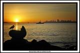 Rising Sun Over Alcatraz