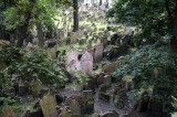 from the second-floor windows, we can look over the old Jewish cemetery