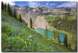 Lower Blue Lake Wildflowers 2