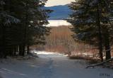 Snowshoe trail.jpg