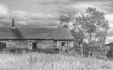 Krauss house