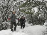 Snowshoeing Gang