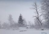 Fraser Lake fog.jpg