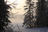 Winter fields.jpg