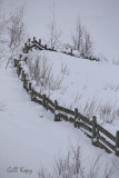 Snowy fence.jpg