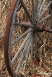 Wagon wheel2.jpg