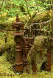 Port Essington Graveyard3.jpg