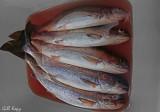 Fish for dinner2.jpg
