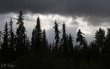 Stormy skies2.jpg