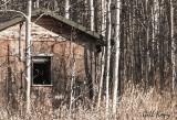 Snug Bay cabin.jpg