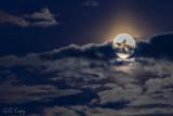 Strawberry moon2.jpg