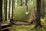 Nakusp cabin.jpg