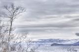 Bleached lake.jpg
