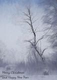 Winter tree4.jpg