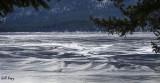 Ice patterns.jpg