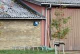 M30, Hundtofte, Langeland, 05-09-15, 0V4E6037.jpg