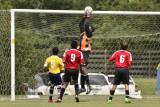 CASL Arsenal Fall 2013 U14