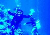N.O Divers.jpg