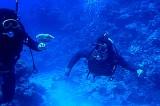 N.Oz divers.jpg