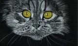 Just Cat - charcoal, 5 x 7