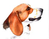 Beagle - watercolor, ink, 5 x 7