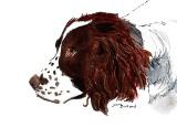 Rex - watercolor, ink, 5 x 7