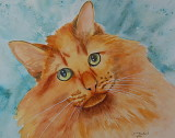 Flerty Fred - watercolor     8 x 10    2016