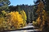 Ebbetts Pass Road (Hwy 4) - October, 2013