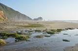 McClures Beach, Marin County - April, 2014
