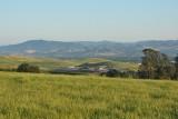Napa & Sonoma wine country - June, 2014