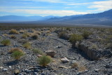 Death Valley - December, 2014