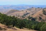 Lone Tree Road, San Benito County