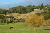 Napa & Sonoma Counties - autumn, 2016