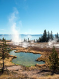 Hot springs on the shore of Yellowstone lake
