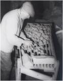 aardappelsorteermachine