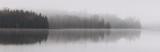 Itasca fall shoreline in fog II copy.jpg
