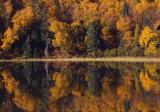Lake Itasca reflection copy.jpg