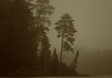 Foggy sunrise on Douglas Lodge arm of Itasca copy.jpg