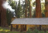 Yosemite NP-Wawona and Mariposa