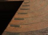 Life of Sequoia copy.jpg