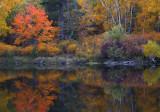 Fall colors 3.jpg