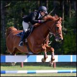 Eastwood Equine 2013