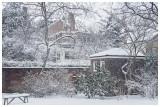 Society Hill Winter Scene.jpg
