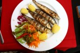 Grilled Sardines - Outstanidng
